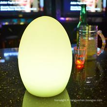 LED lampe décoratives couleur, changer la taille des lampes table USB rechargeable oeufs lumières