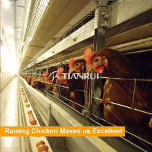 Chicken equipment poultry farm cages