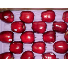 Sweet Red Fresh Huaniu Apple Supplier