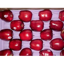 Сладкий красный свежий Huaniu Apple Поставщик