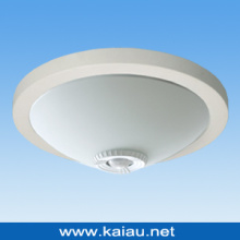 Energy Saving Ceiling Light (KA-C-302F)