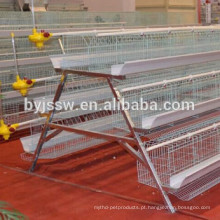 Layer Chicken Cage Design para Farm Chicken Aul