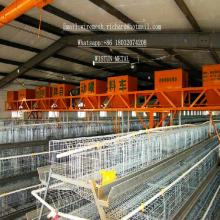 Chicken Cage Henhouse Poultry Equipment Chicken Cage Henhouse Poultry Equipment