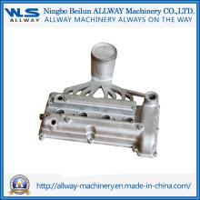 Molde de fundição sob pressão de alta pressão moldado Sw029A Cilindro de cabeça de cilindro2 / Fundição