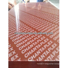 Contreplaqué filmé / contreplaqué / matériaux de construction contreplaqué