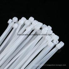 Attache-câble en nylon à verrouillage automatique