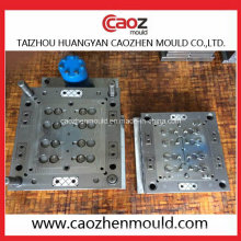 Acht Hohlraum Kunststoff Injection Flap Cap Mold