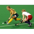 Economic Anti-UV Durable Synthetic Hockey Turf