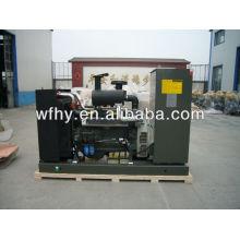 Germany deutz diesel generator 25KVA with ATS