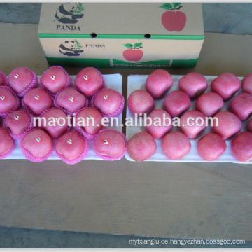 Fuji Apple Fabrik China