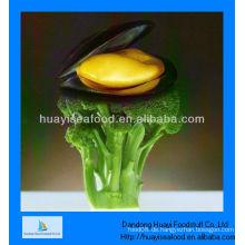 Gefrorenes gekochtes Miesmuschelfleisch