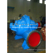 Double Suction Pump (S, SH Russian hydraulic model500S13)