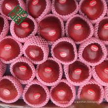 pommes de fuji chinois pomme fraîche pour fuji apple