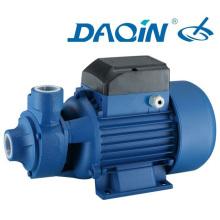 Water Pump Qb60