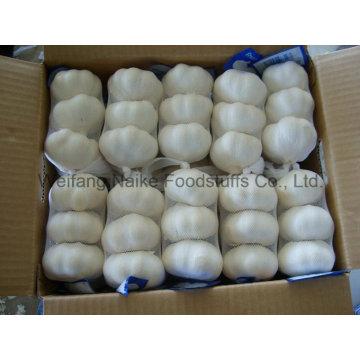 2015 Ernte neue chinesische frischen Knoblauch