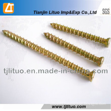 Hi-Lo Thread Concrete Window Screw Concrete Self Tapping Screws