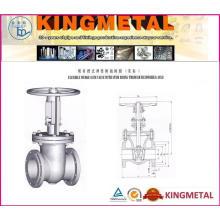 Klasse 150 ~ 1500 Cast Stahlschieber