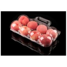 disposable portable 8pack apple fruit box