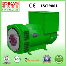 Wechselstrom-schwanzloser Generator mit konkurrenzfähigem Preis und hoher Qualität