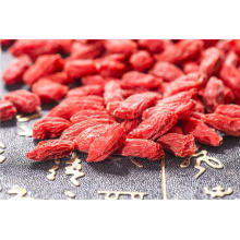 Dark Red Goji Berry / goji berry standar oval tinggi