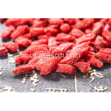 Fresh Vitamin Goji Berry EU certified