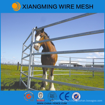 America PVC Coated Horse Yards with ISO