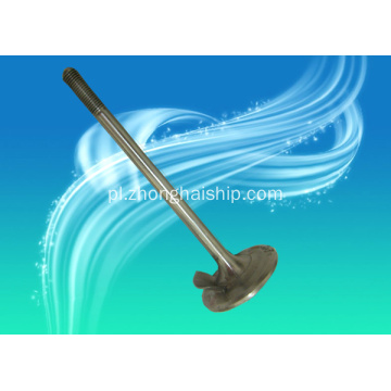 JICHAI Diesel Engine Valve for Agricultural Machinery