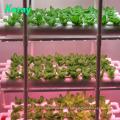 Крытая вертикальная Ферма система Гидропоники для посадки органические овощи Клубника