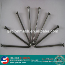 Hot Sale concrete steel nail(cheaper) China manufacturer