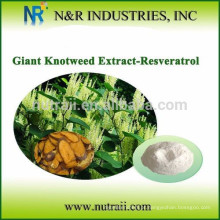Pó de resveratrol sintético puro 98%