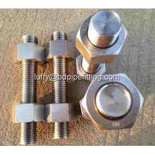 TEFLON COATED STUD BOLTS DAN NUTS PTFE Fastener