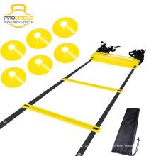A escada ajustável da agilidade da etapa dos esportes lisos de Procircle com leva o saco