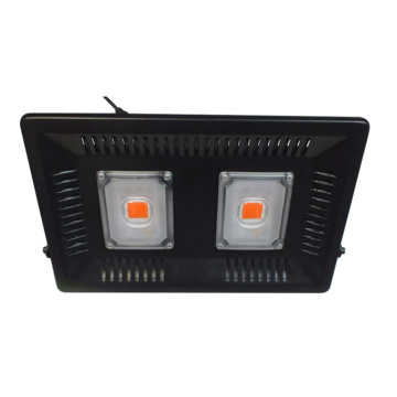 100W Changeable Warm White LED planta cresce a luz