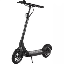 Adults Foldable 350W 2 Wheel Electric Scooter with En Standards