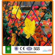 Diamond Pvc iron chain link fence