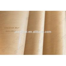 Tissu de fibre de verre enduit de téflon poreux de tissu avec la résistance thermique