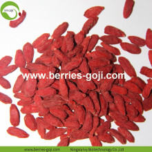 Dieta Natural Fruit Super Common Goji Berry