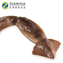 new arrival illex squid illex Argentina for bait 150 -200g