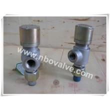 """Válvula de segurança de pressão manual de alavanca manual rosqueada Bsp (A21H-3/4 """")"""