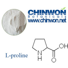 Plant Source Pharmaceutical Grade Amino Acids L-Proline