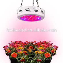New product 50w high power LED( red orange yellow green blue white purple )