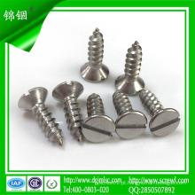 10mm parafuso de rosca de aço inoxidável para concreto