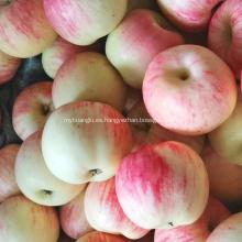 Manzanas rojas frescas de la gala