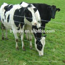 Galvanizado Dobradiça Joint Field Fence / Cow Fence