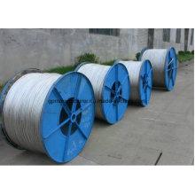 ASTM Standard Steel Core Aluminum Stranded Wire/ACSR