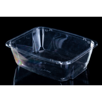 clear disposable plastic salad bowl