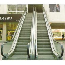 Stainless Steel Home Cheap Cost Residential Indoor Escalator