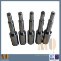 Punzón de carburo de tungsteno de precisión estándar Hasco para molde