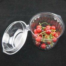 Boîte d'emballage en plastique de fruit