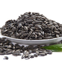 Cheap wholesale different type raw sunflower seeds